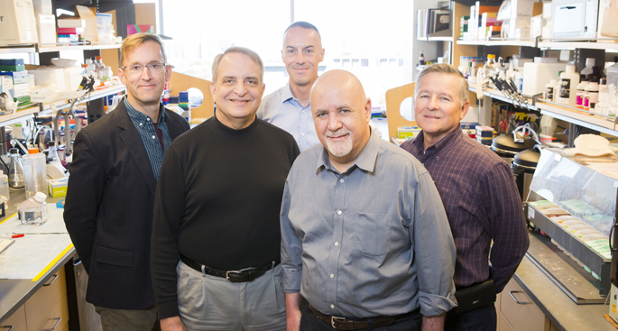 The research team studying undiagnosed congenital diarrheas includes, from left, Matt Tyska, PhD, James Goldenring, MD, PhD, Joseph Roland, PhD, Sari Acra, MD, MPH, and Hernan Correa, MD.