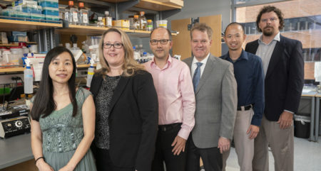 "From left, Qi Liu, PhD, Lori Coburn, MD, Gregor Neuert, PhD, Keith Wilson, MD, Ken Lau, PhD, and Bennett Landman, PhD, are leading VUMC's contribution to the ""gut cell atlas"" program funded by the Leona M. and Harry B. Helmsley Charitable Trust."
