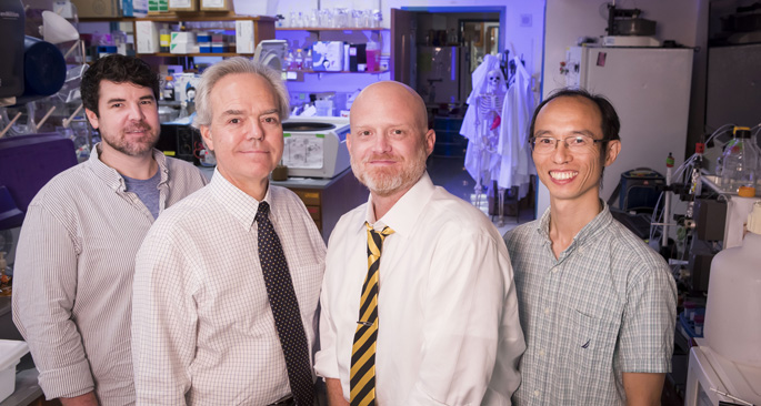 From left, Ryan Allen, PhD, MacRae Linton, MD, Kasey Vickers, PhD, Quanhu Sheng, PhD, and colleagues are working to create a new model of atherosclerosis development. (photo by Susan Urmy)