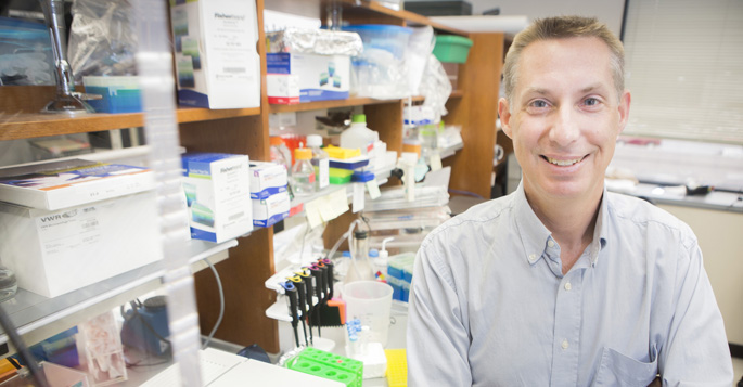 Jeffrey Rathmell, PhD, directs the Vanderbilt Center for Immunobiology.