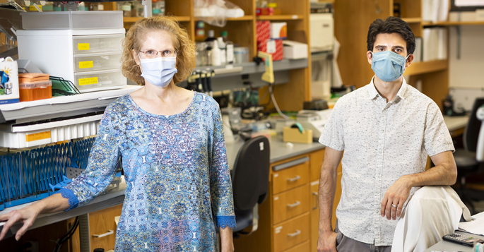 Michelle Southard-Smith, PhD, Aaron May-Zhang, PhD, and colleagues have created a molecular 'atlas' of genes expressed by the neuronal cells within the intestine that coordinate the functions of the gastrointestinal (GI) tract.
