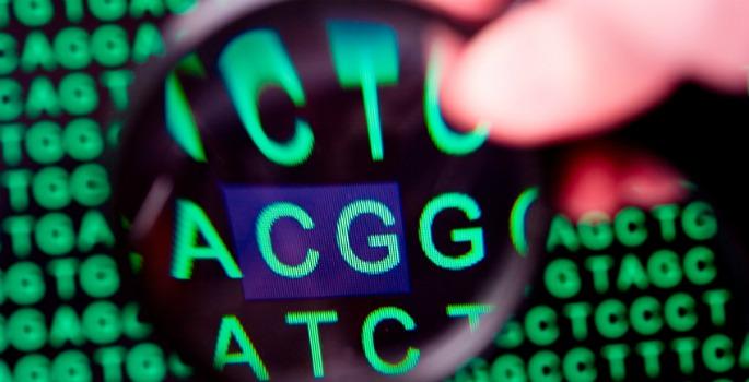 Deciphering DNA code